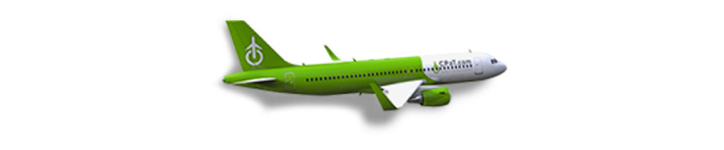 Airbus A320NEO Initial and Recurrent Training Course
